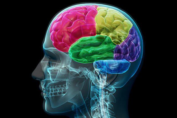 Dieser neuartige 3D-Gehirnscanner soll Leben retten