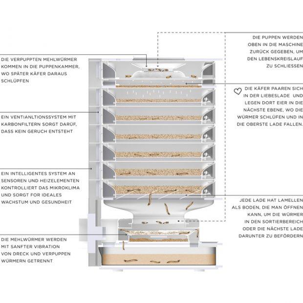 The Insect Hive: Insektenproduktion in der eigenen Küche