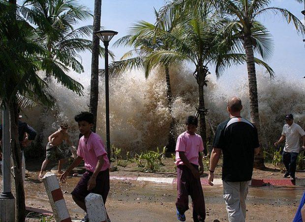 Tsunami-Warnung ohne Aufwand: Vorhandene Datenkabel können im Meer Erdbeben messen